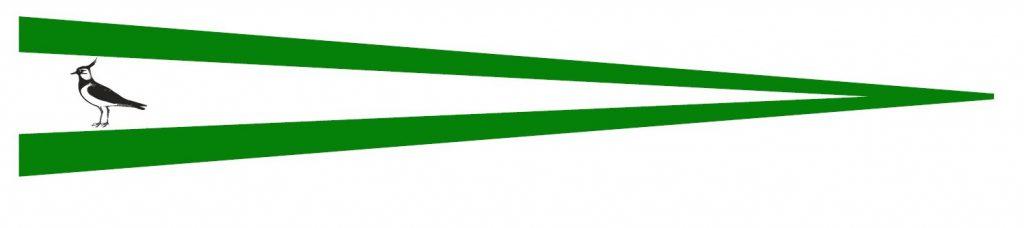 langwimpel-bild